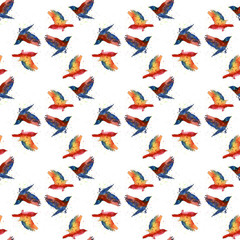 Seamless watercolor texture with birds . Seamless texture with high quality hand painted watercolor elements.