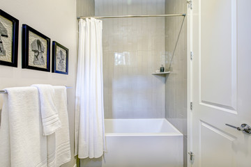 White and grey bathroom interior with a shower
