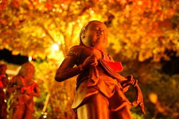 神奈川県 大山寺 秋の夜の参道
