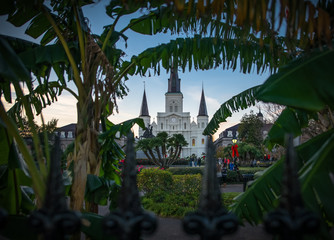St. Louis Cathedral through Foliage, New Orleans