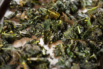 Freshly baked green kale chips prepared with olive oil on dark wooden background