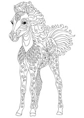 Foal. Hand drawn horse. Sketch for anti-stress adult coloring book in zen-tangle style. Vector illustration for coloring page.