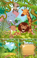 Nature scenes with wild animals in jungle