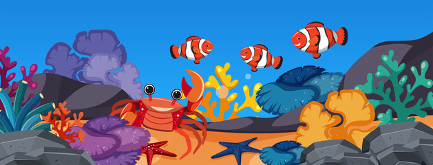 Clownfish and crab under the ocean