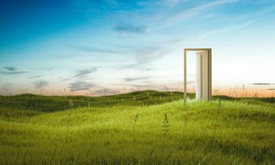 Opened door on beautiful field. 3d rendering