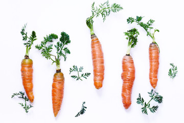 Natural organic carrots, healthy food, vegetables