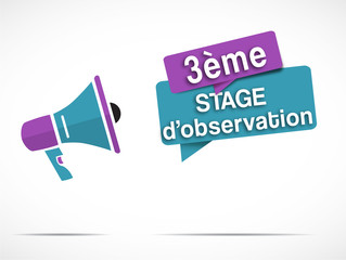 mégaphone : 3ème stage d'observation