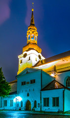 Night view of the Tallin cathedral in Estonia
