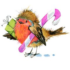 Christmas bird watercolor illustration