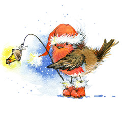Christmas bird watercolor illustration