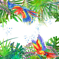 Parrot watercolor. Tropical forest watercolor background. Exotic plant.
