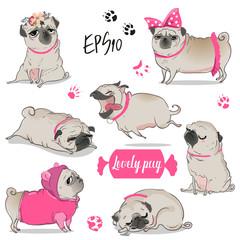set with cute cartoon pug