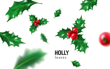 Realistic holly, ilex with berry and leaves, mistletoe set. Christmas, new year holiday celebration symbol, decorations. 3d realistic vector illustration isolated on white background