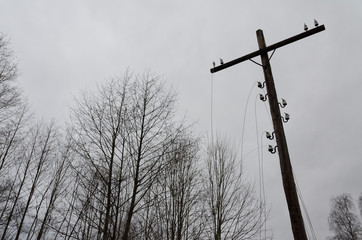 From the old electric pole hangs a ragged wire. The pillar has the shape of a cross. In the background, you can see the crowns of trees without leaves. The sky is covered with clouds. Late fall. Backg