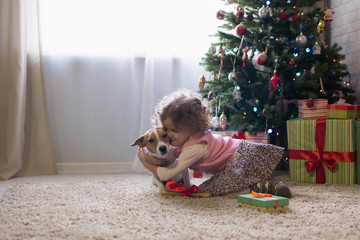 Little girl with a Jack-breed dog scattered near a Christmas tree