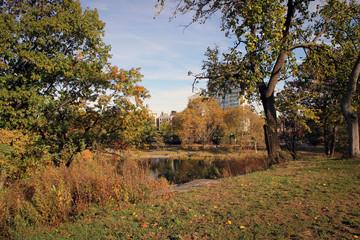 Autumn landscape of Central Park, New York, USA