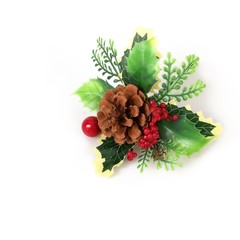 Christmas decorations: a branch of a Christmas tree, berries and cone