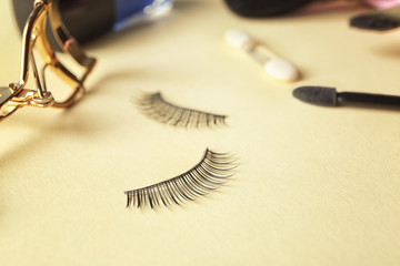 False eyelashes on color background