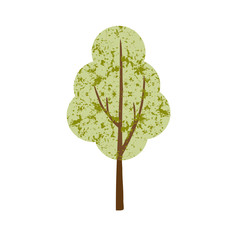hand drawn single textured tree vector clipart