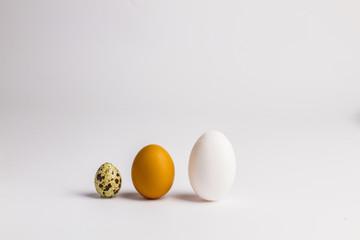 different three eggs