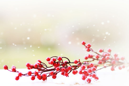 Christmas decoration  winter background