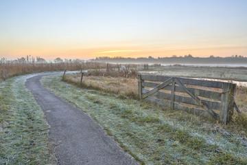 Poster Gray Misty agricultural polder landscape
