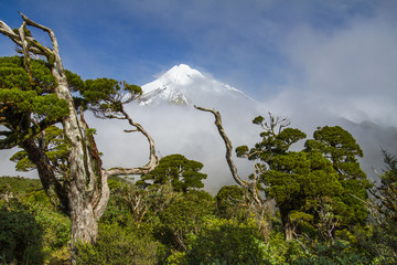 taranaki or mount egmont vulcano covered with snow during winter in new zealand near new plymouth