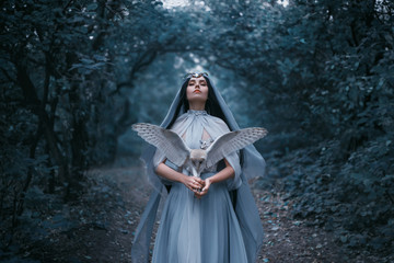 Fotorolgordijn Bestsellers Kids Mysterious sorceress in a beautiful blue dress calls for strength. The background is a cold forest in the fog. Girl with a white owl. Artistic Photography