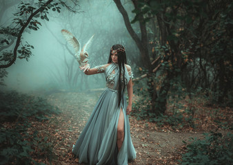 Mysterious sorceress in a beautiful blue dress. The background is a cold forest in the fog. Girl with a white owl. Artistic Photography Wall mural