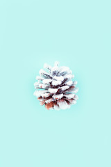 White frosty decoration pine cone on pastel coloured background.