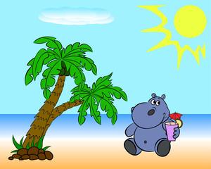 Hippopotamus on the beach