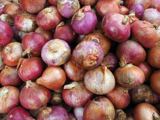 Onion, large pile, background texture of bulb is brown and pink.