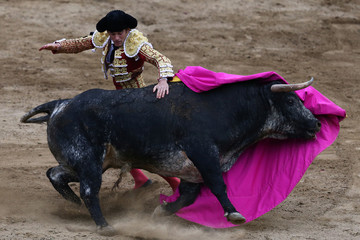 Spanish matador Jose Garrido performs a pass to a bull during a bullfight at Peru's historic Plaza de Acho bullring in Lima November 19, 2017.