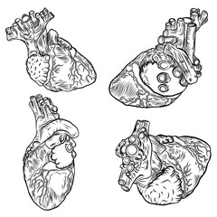 Set of anatomical hearts. Hand drawn flash tattoo concept of anatomy heart. Valentine's day card design elements. Vector.