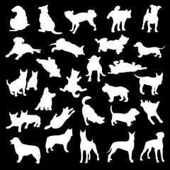 イヌのイラスト