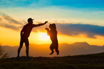 Big dog jumping to take a biscuit from a man silhouette with background at colorful sunset mountains