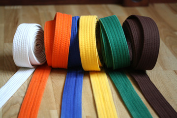 Deurstickers Vechtsport Martial Arts Colorful Karate Belt