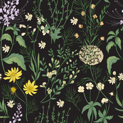 Elegant floral seamless pattern with gorgeous hand drawn wild flowers, tender flowering herbs and herbaceous plants on black background. Botanical vector illustration in beautiful antique style.
