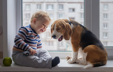boy and Beagle dog sit together on the window sill