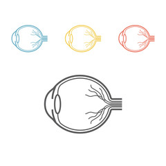 Eyeball anatomy line icon