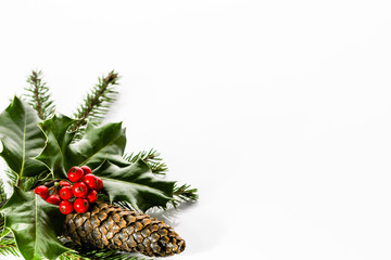 Decoration with christmas holly isolated on white background