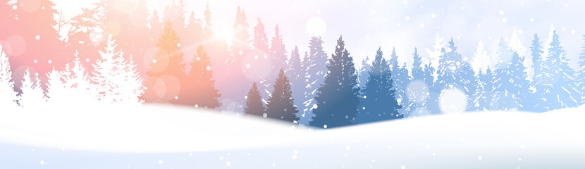 Day In Winter Forest Glowing Snow Under Sunshine Woodland Landscape White Snowy Pine Tree Woods Background Flat Vector Illustration