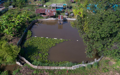 Top view fish pond in country Thailand