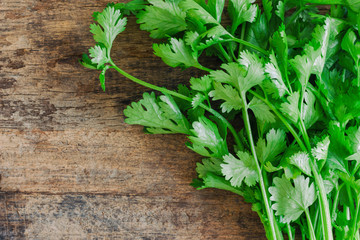 Green leaves coriander lay on wood table in top view flat lay with copy space. Food preparation concept for fresh vegetable.