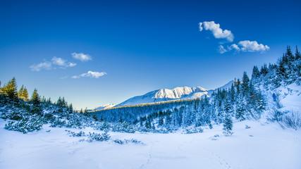 Snowy peaks in Tatra mountains winter, Poland