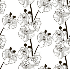 Vector Black Seamless Pattern with Drawn Orchid Flowers