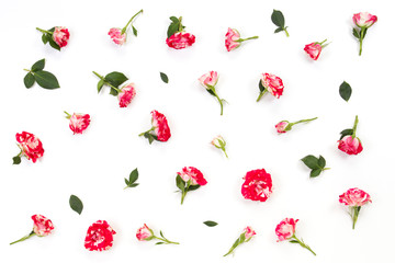 Floral pattern made of pink red roses and green leaves on white background.