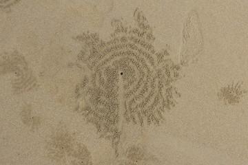 Symbols on a Beach