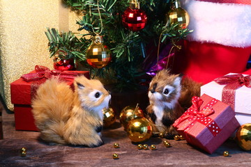 Two Squirrels and gift decorate under christmas tree for celebration christmas party.