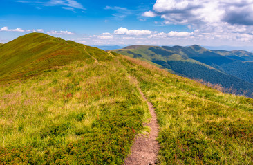 path on top of Carpathian mountain ridge